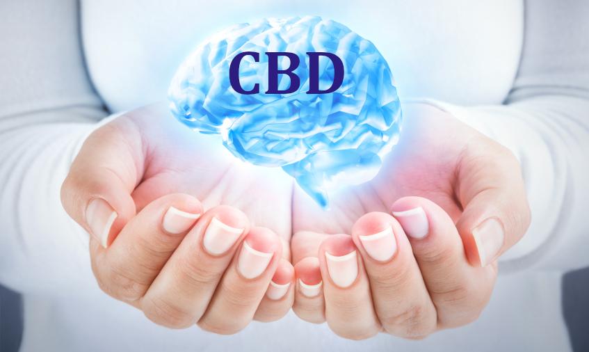 Канабидиолът (CBD) подобрява кръвния поток към хипокампуса на мозъка