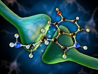 Серотонинов рецептор